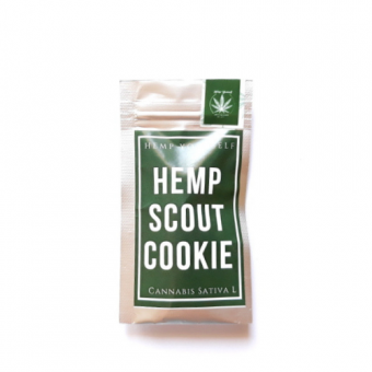 HEMP SCOUT COOKIE 1G